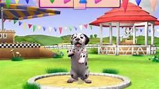 de nouveaux jeux pour les de chiens et chats