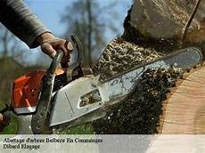 Abattage D Arbre 224 Belbeze En Comminges T 233 L 05 33 06 18 82