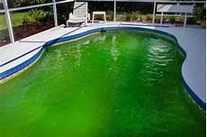 produit miracle eau verte piscine votre piscine a une eau verte testez le bicarbonate de