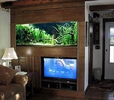 Aquarium In Wand Integrieren 100 Ideas Integrate Aquarium Designs In The Wall Or In The