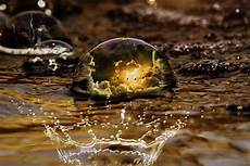 kann regenwasser trinken kann regenwasser trinken giftig ja oder nein
