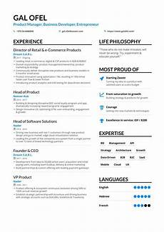business development resume sles and writing guide for