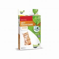 produit anti puce chaton pipettes antipuce chaton naturelles efficaces naturly s