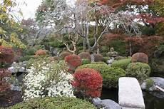 pflanzen japanischer garten anlegen