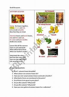 poetry analysis worksheet to autumn 25532 autumn leaves a poem esl worksheet by korova