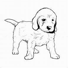 Malvorlage Hundewelpen Und Die Welpen Fabelhaft 31 Ausmalbilder
