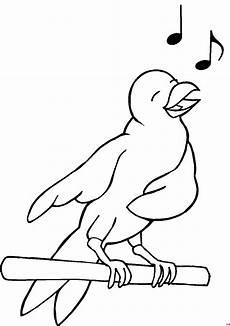 frisch vogel ausmalbilder kostenlos top kostenlos