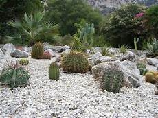 giardini piante grasse per esterno granulati da giardino tipi di giardini granulati per