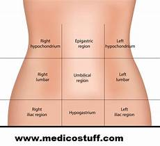 abdominal diagram abdominal quadrants and its contents abdominal organs by region medicostuff