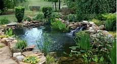 pour bassin aquatique bassin aquatique de jardin 233 de construction et photos