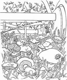 Gratis Malvorlagen Blumen Pilze Im Garten Ausmalbild Malvorlage Blumen