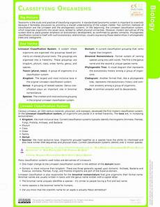 linnaean classification system worksheet kids activities