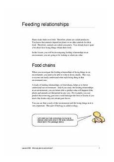 feeding relationships activities project for 6th 8th grade lesson planet