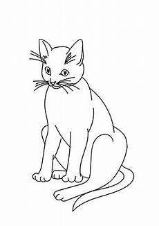 Ausmalbilder Siamkatze Ausmalbild Grosse Katze Zum Ausdrucken