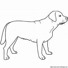Ausmalbilder Hunde Labrador Ausmalbilder Hund Bild Der Labrador
