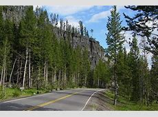 deaths in yellowstone this year
