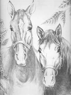 pferde ausmalbilder erwachsene pferde ausmalbilder f 252 r erwachsene kostenlos zum