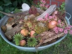 zinkwanne bepflanzt zinkwanne bepflanzen garten und
