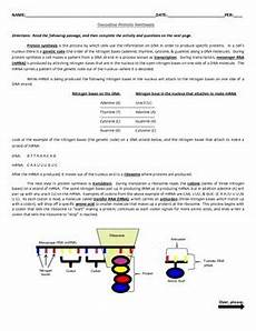decoding protein synthesis decoding mutations activities 2 worksheet