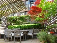 Dachterrasse Sichtschutz Ideen Kletterpflanzen Holzzaun