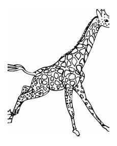 Malvorlagen Giraffen Gratis Giraffe Malvorlagen Gratis Zum Ausdrucken