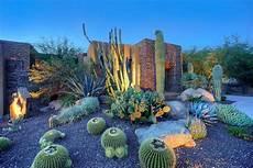 Southwestern Cactus Garden Desert Garden Garden