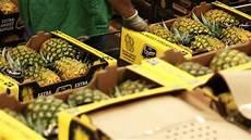 alimenti con colesterolo cattivo alimenti contro il colesterolo cattivo l ananas