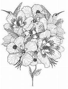 Blumen Ausmalbilder Erwachsene Die 209 Besten Bilder Malvorlagen Blumen Malvorlagen