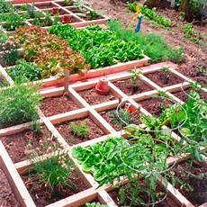 Ide Taman Sayuran For Android Apk