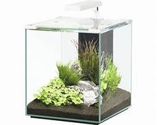 aquarium aquatlantis nano cubic 40 mit led beleuchtung