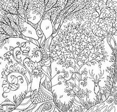 eulen malvorlagen quest pin coloring pages forkids auf coloring page for