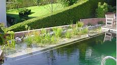 Teich Und Schwimmteichbau Garten Und Landschaftsbau