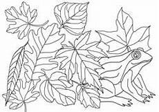 Ausmalbild Igel Im Laub Ausmalbilder Herbst Basteln Gestalten