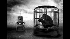 la gabbia it riukiri animali in gabbia
