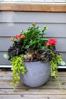 3 steps for stunning container gardening lowe s canada