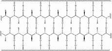 illustrated glossary of organic chemistry beta sheet