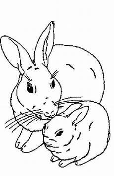 12 dibujos de conejos para colorear