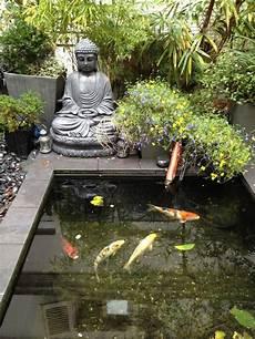 bassin koi interieur bassin poisson koi