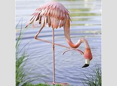 Wind & Weather Metal Bowing Flamingo Statue & Reviews
