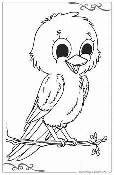 malvorlage vogel einfach top kostenlos f 228 rbung seite