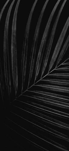 Black Iphone X Wallpaper Apple