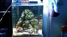 dennerle nano cube reef tank i firing up metal halide