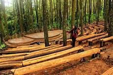 Mendunia Ini Panggung Hutan Pinus Mangunan Dlingo Bantul