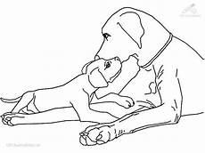 Malvorlage Pferd Und Hund Malvorlage Hund