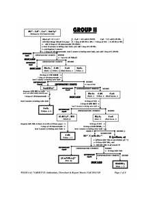 Group 1 Cations Flow Chart Sherin 5 Lab The Chemistry And Qualitative Analysis Of