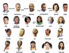 hair style list hair and the different types learning