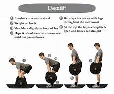 good deadlift workouts blog dandk