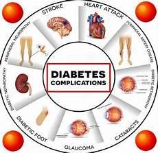10 Obat Diabetes Tradisional Dan Makanan Sehat Penderita