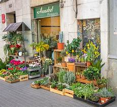 negozio fiori free photo barcelona spain flower shop free image on