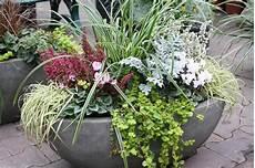Balkonkasten Herbst Winter - die besten 25 grabbepflanzung winter ideen auf